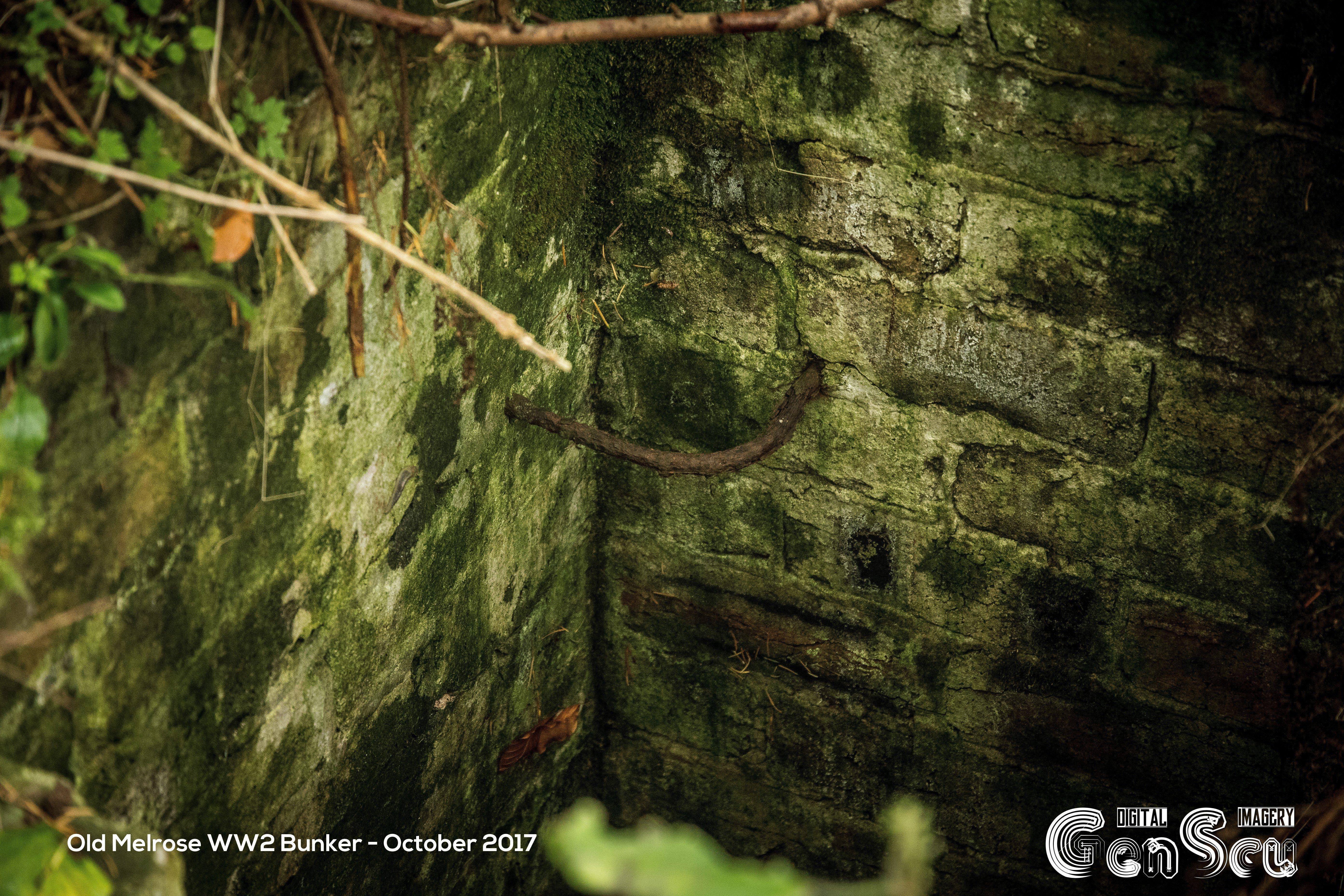 Old Melrose WW2 Bunker